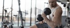 échauffement musculation, curl biceps, haltère